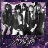 AMETHYST - The Maze Of Destiny (Cd)