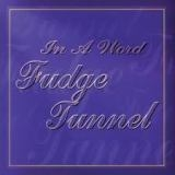 FUDGE TUNNEL - In A Word (Cd)