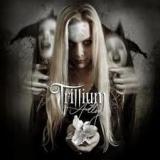 TRILLIUM - Alloy (Cd)