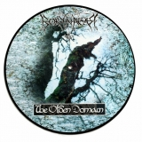 BORKNAGAR - The Olden Domain (12