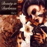 BEAUTY IN DARKNESS VOL.3 - Various Artists (Cd)