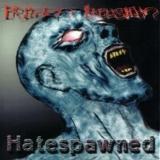 FROZEN ILLUSION - Hatespawned (Cd)