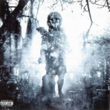 MACHINE HEAD - Through The Ashes Of Empires (Cd)