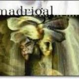 MADRIGAL - I Die You Soar (Cd)