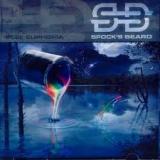 SPOCK'S BEARD - Feel Euphoria (Cd)