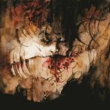 SHINING - Ix - Everyone, Everything… (Cd)