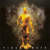 THE SHOCK - Pinultimate (Cd)